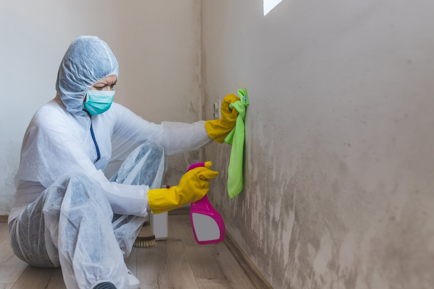 remove mold safely